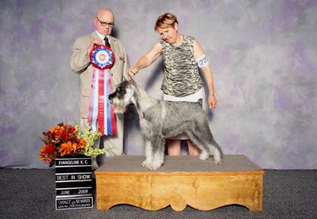 Lia winning Best in Show
